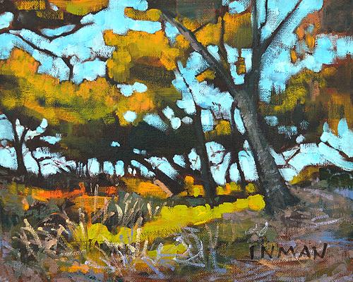 Torrey Pines Landscape Painting La Jolla Del Mar
