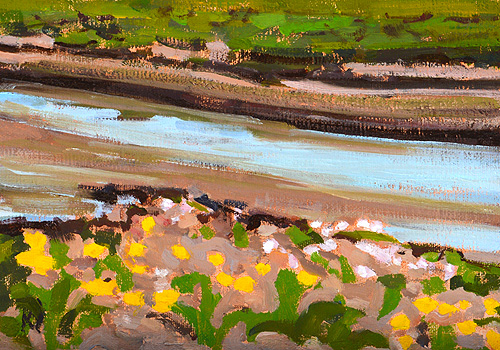 San Diego Wildflowers Painting