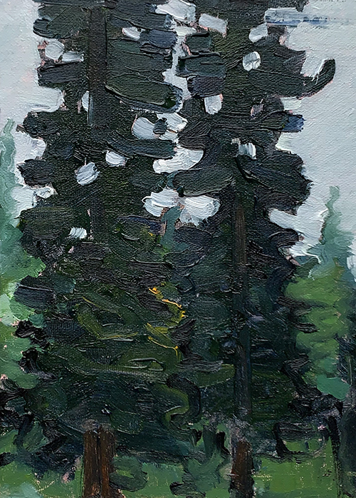 Painting of Redwood trees in Sonoma County